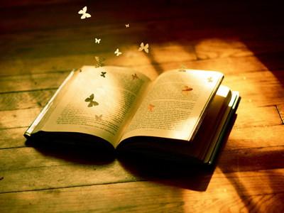 【大佬的书单】第一期,另一种视角看世界