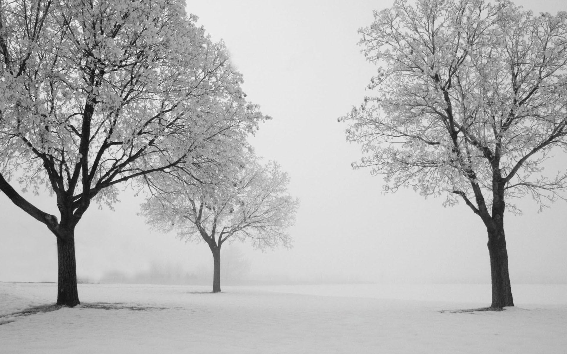 电脑桌面冬天风景图片