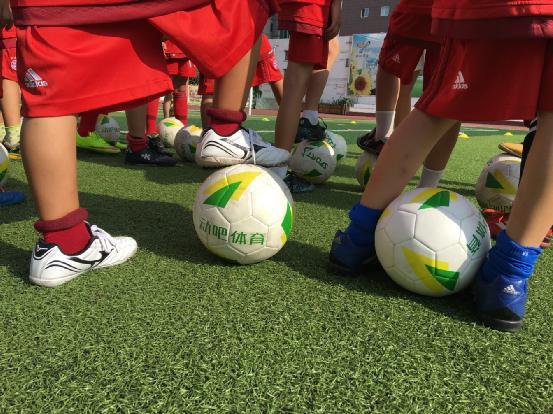 站在体育产业绿茵场,动吧足球能否倒挂金钩?