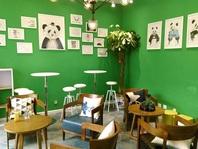 面向放学后3小时市场的熊猫儿童大学,凭何获蔡文胜青睐?