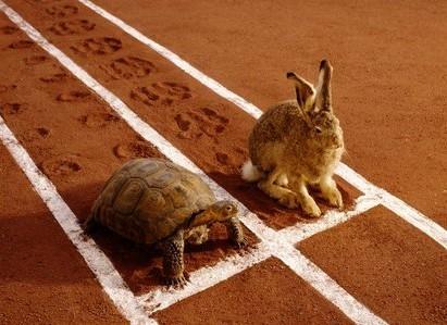 最快的互联网碰到最慢的教育:在线教育该慢还是快?
